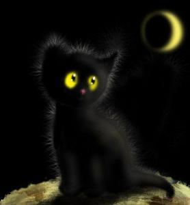 миниатюра к 14112014 humor-cat
